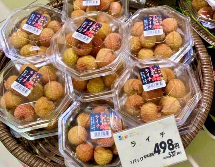 Lychee exports to Japan going smoothly: Trade counsellor